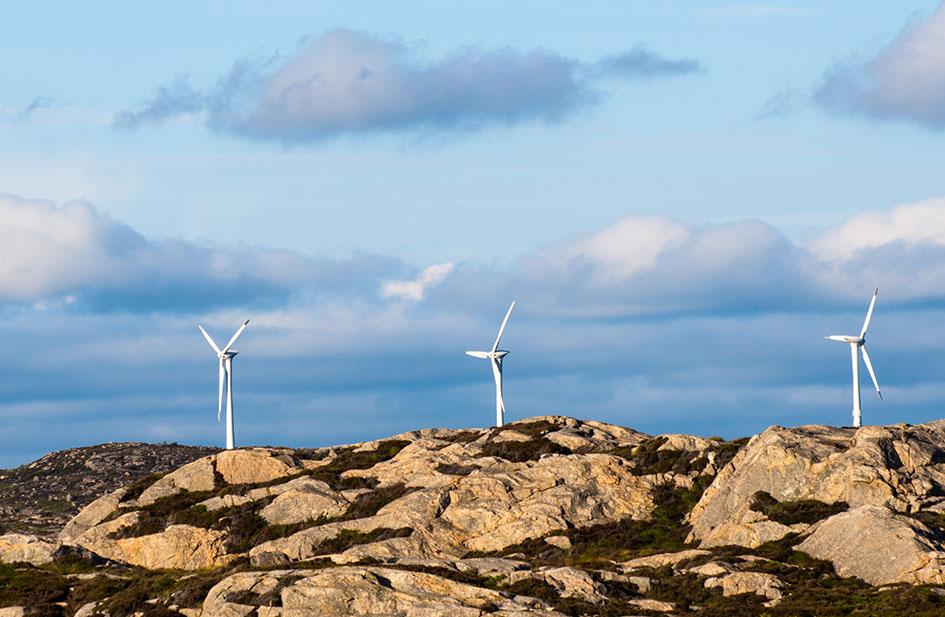 Всемирный банк увеличит финансирование проектов в области изменения климата.Вокруг Света. Украина