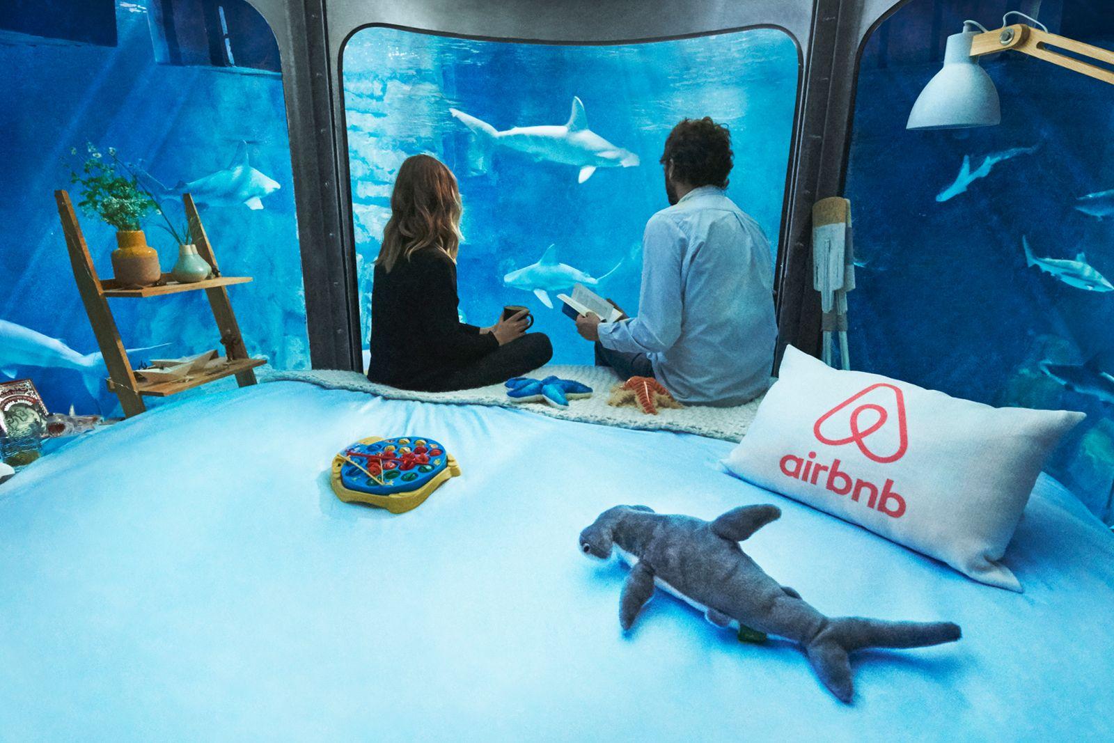 Airbnb предложила своим пользователям провести ночь с акулами.Вокруг Света. Украина