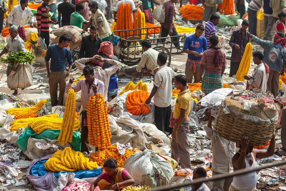 Город суеты, базаров и великолепной уличной еды. Записки из индийской Калькутты.Вокруг Света. Украина