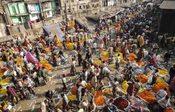 Рынок Mullik Ghat в Калькутте