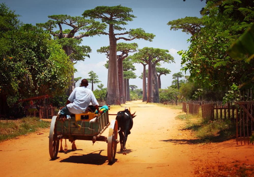 День независимости Мадагаскара
