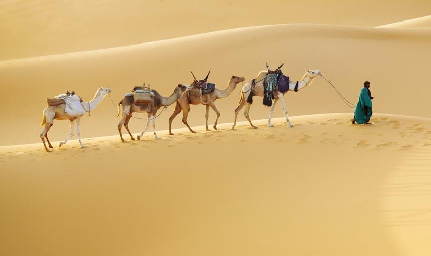 15 удивительных фактов об Алжире