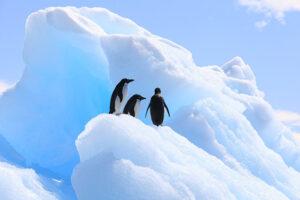 Озоновый слой над Антарктикой «выздоравливает»