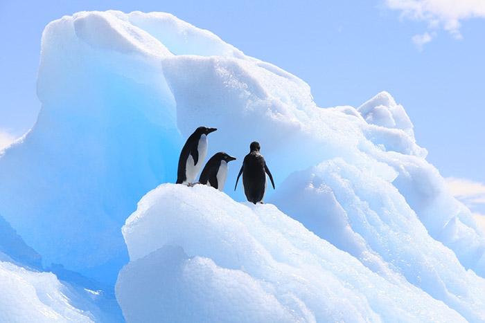 Озоновый слой над Антарктикой «выздоравливает».Вокруг Света. Украина
