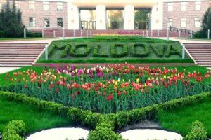 Молдавские приключения с привкусом вина