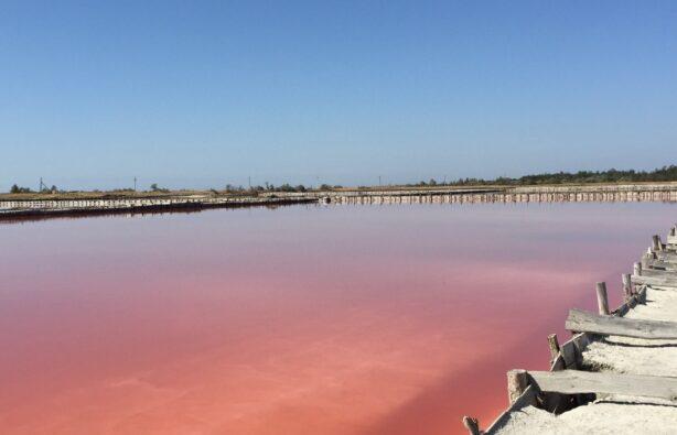 Розовые озера на Херсонщине