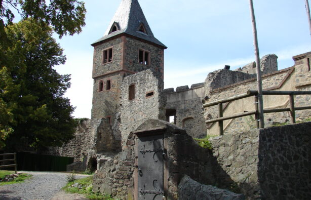 Frankenstein's Castle