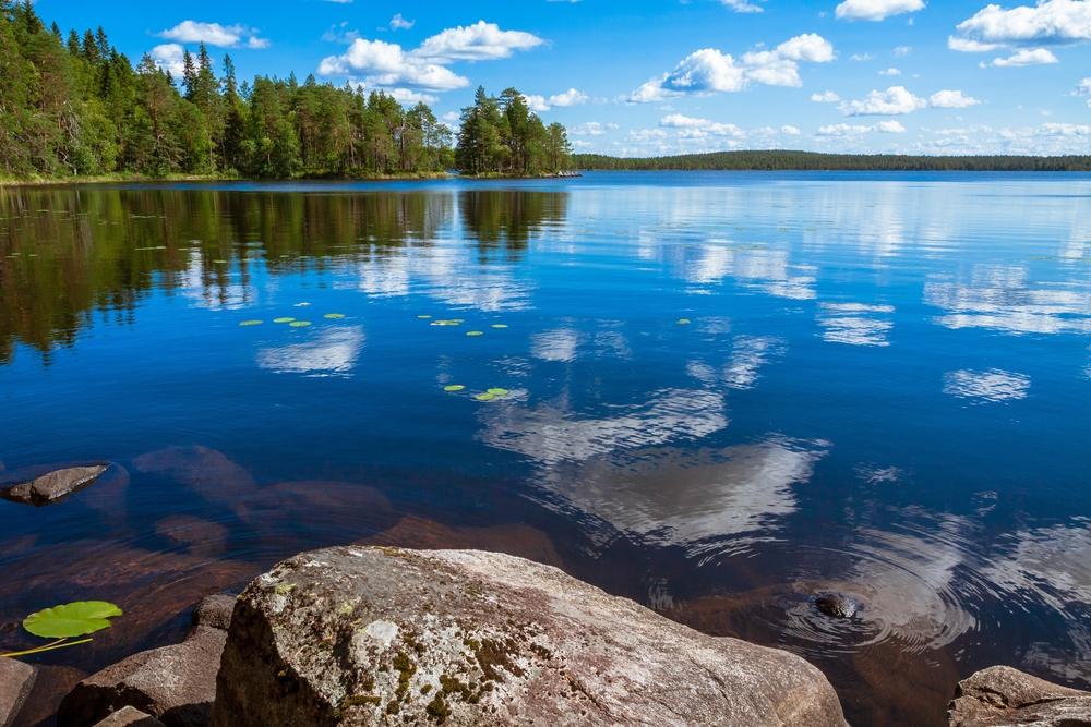Национальный парк Salamajarvi