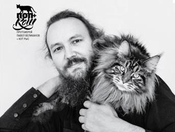 В России выпустили календарь «Поп + кот»