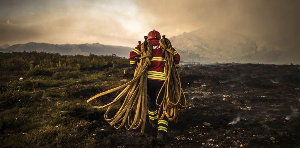 Спасатель на месте лесного пожара