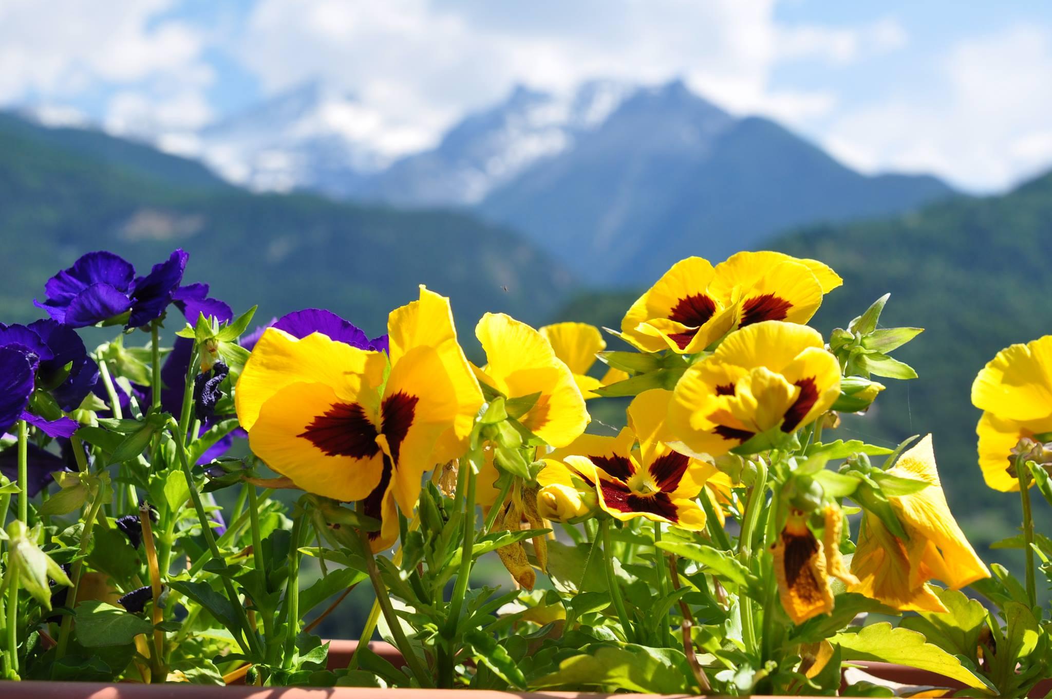 Северная Италия. Рай, спрятанный в горах.Вокруг Света. Украина