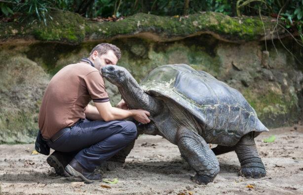 Галапагос, Эквадор, животные