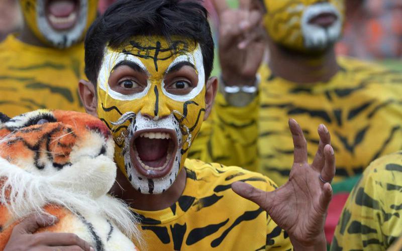 Вперед, тигры!