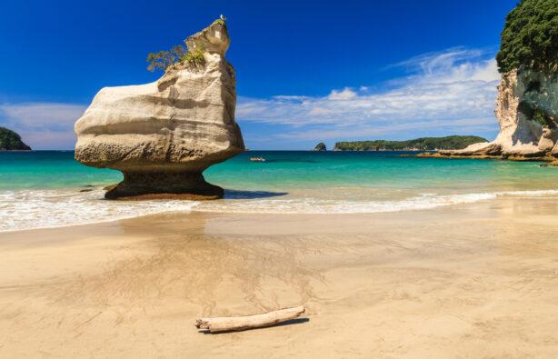 Фото: Shutterstock