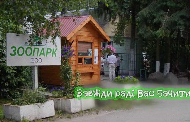 Фото: www.youtube.com