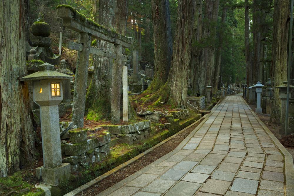 Япония приглашает на экскурсии по кладбищу.Вокруг Света. Украина
