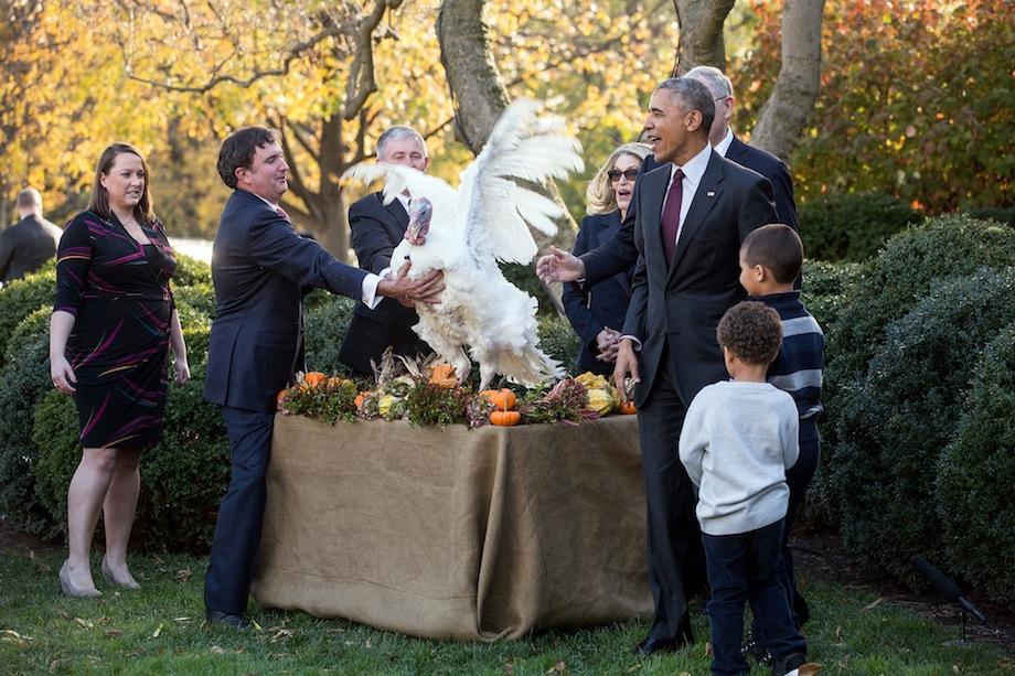 Барак Обама в последний раз помиловал индеек.Вокруг Света. Украина