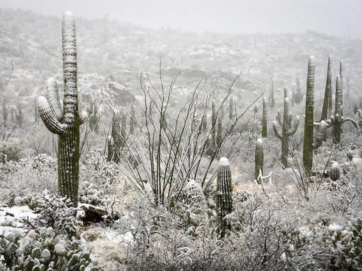 фото: www.images.fineartamerica.com