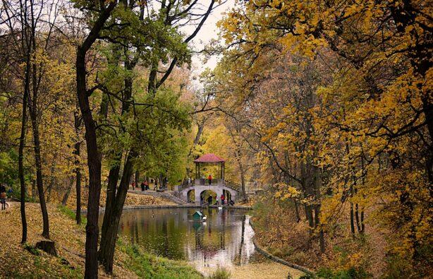 Фото: forum.krasnoznamensk.ru