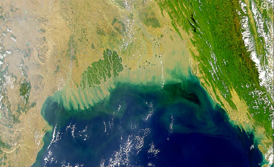 В Индийском океане появилась огромная мертвая зона.Вокруг Света. Украина