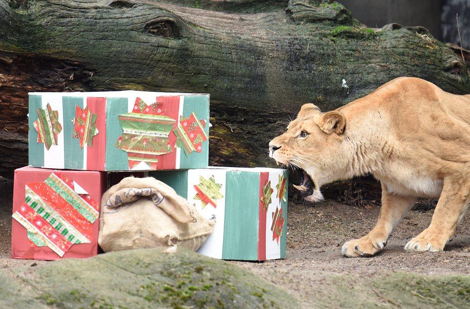 Царские подарки