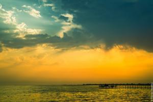 Джарылгач – остров дикой природы