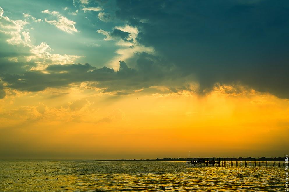 Джарылгач – остров дикой природы.Вокруг Света. Украина