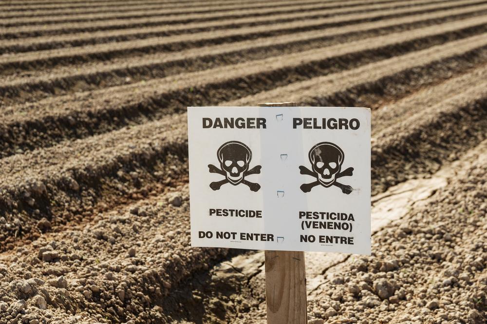Всемирный день против использования пестицидов