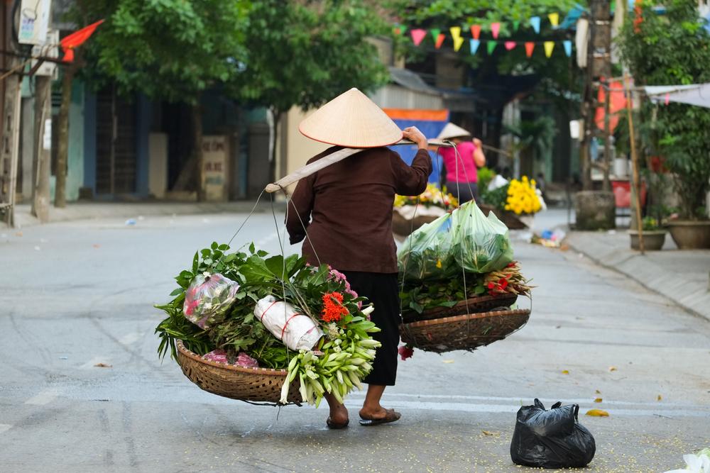 13 фишек Вьетнама: поесть, почувствовать, удивиться.Вокруг Света. Украина