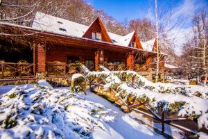 5 причин отдохнуть на Закарпатье
