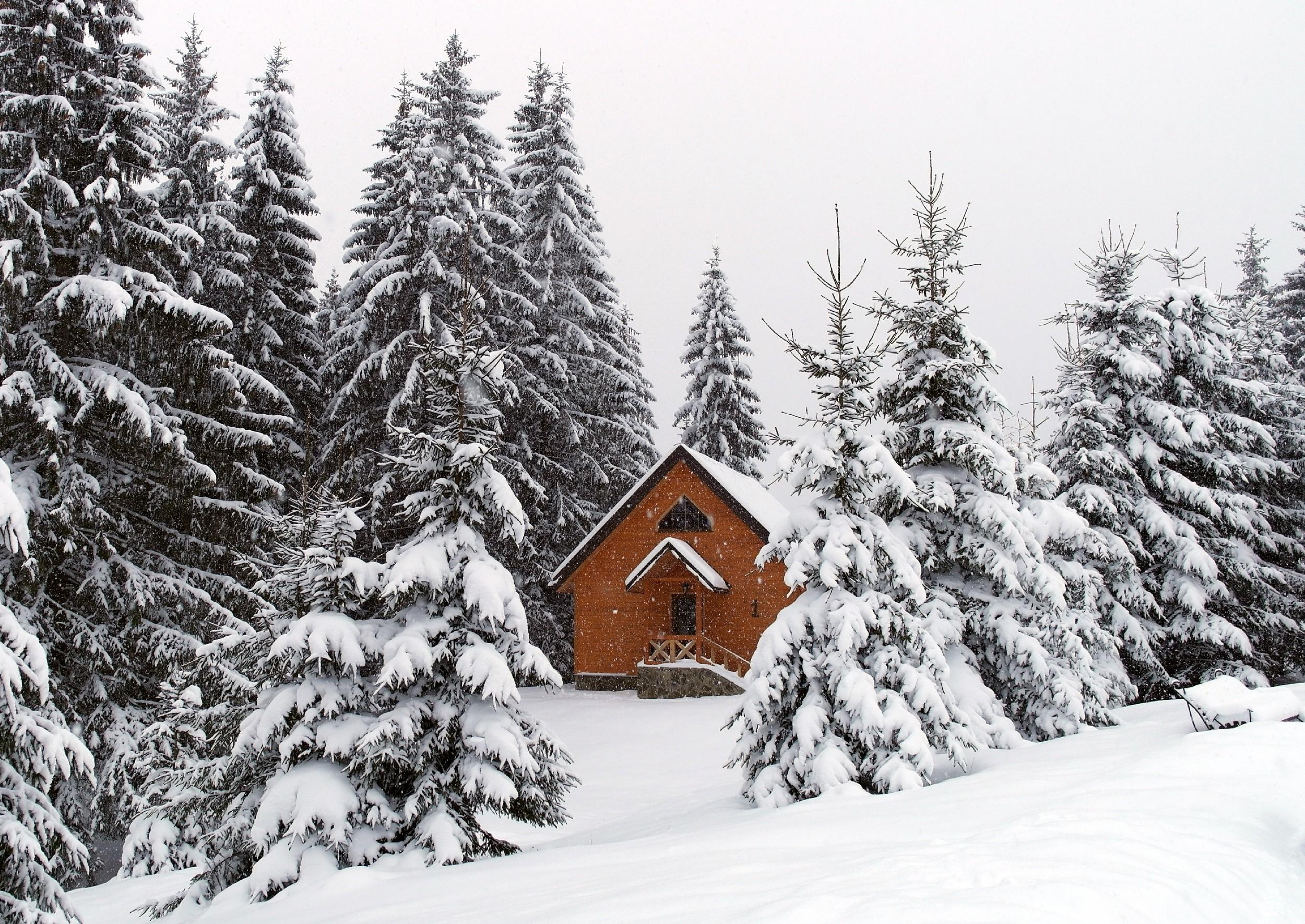 «Хутор Тихий» – твой домик в Карпатах