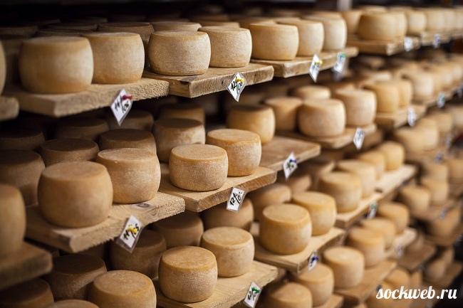 Casu marzu – гнилой сыр из Сардинии