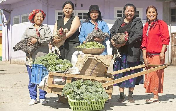 Фото: www.blog.i.ua