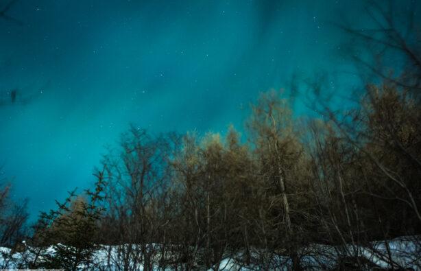 Фото: Полина Забижко