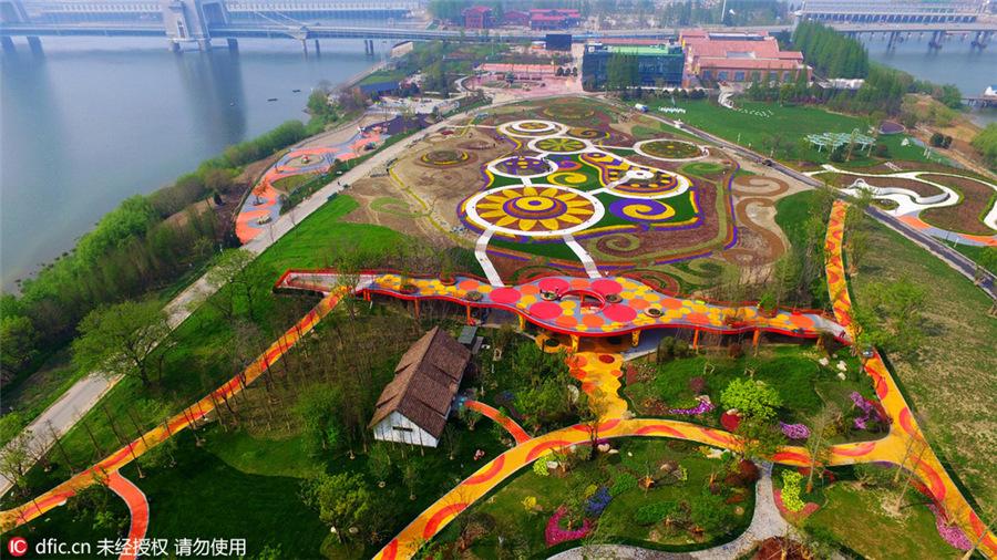фото: m.chinadaily.com.cn