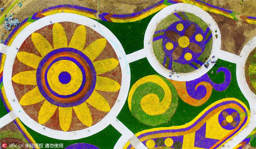 «Марко Поло» - самый большой цветочный парк в Азии.Вокруг Света. Украина