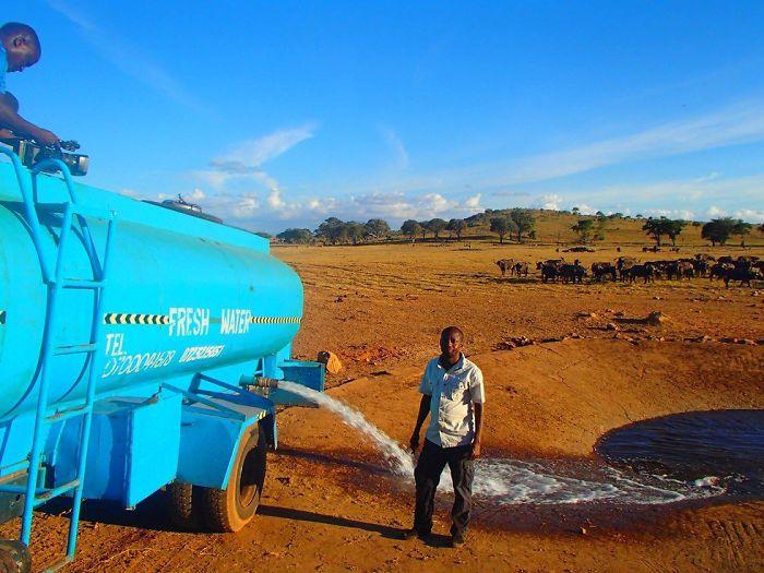 Фермер ежедневно привозит 11 тыс. литров воды для диких животных