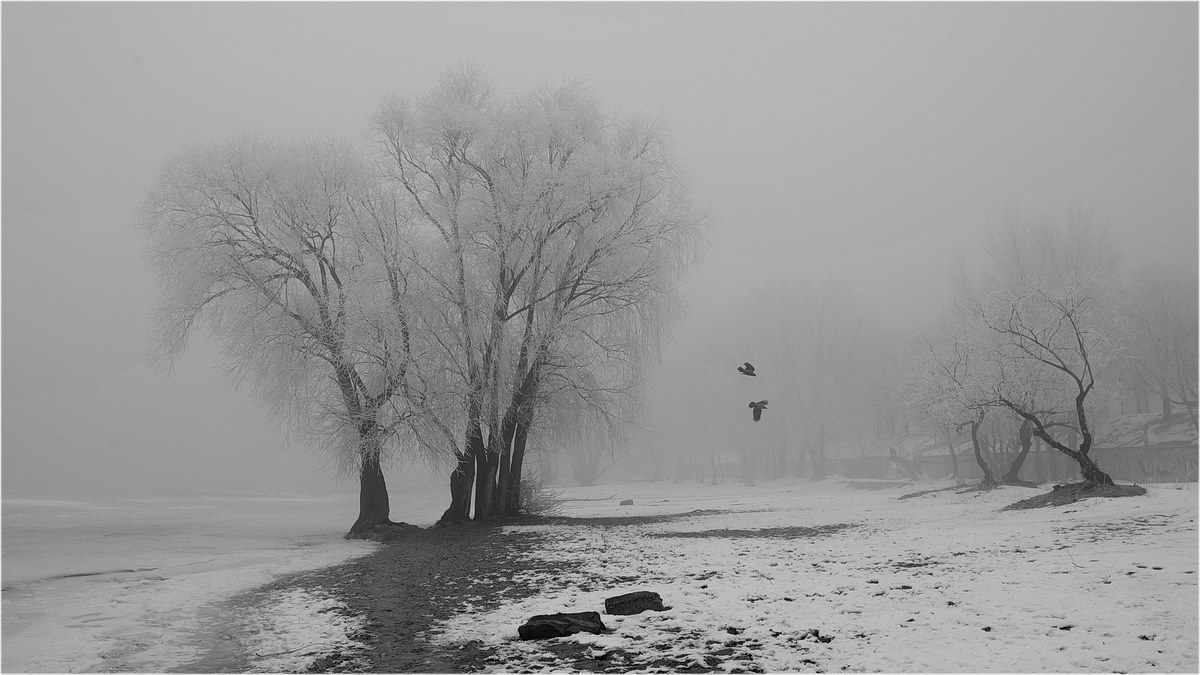 Фото: Айдимир Джафаров