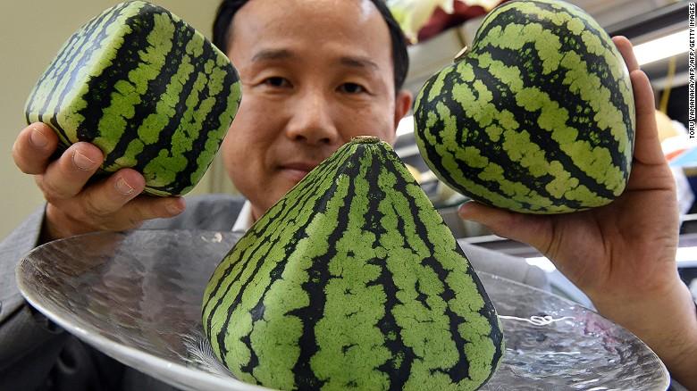Квадратный арбуз за $20 000 – удивительные фрукты в Японии