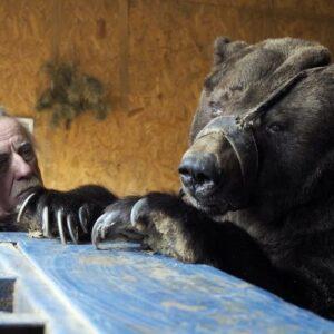 Фото: Dmitry Rogulin/TASS via Getty Images