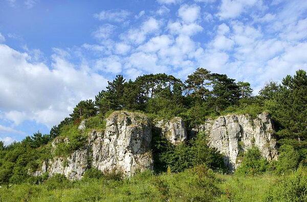 Фото: www.uateka.com