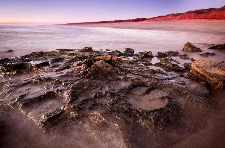 Ученые нашли в Австралии следы древнейших динозавров