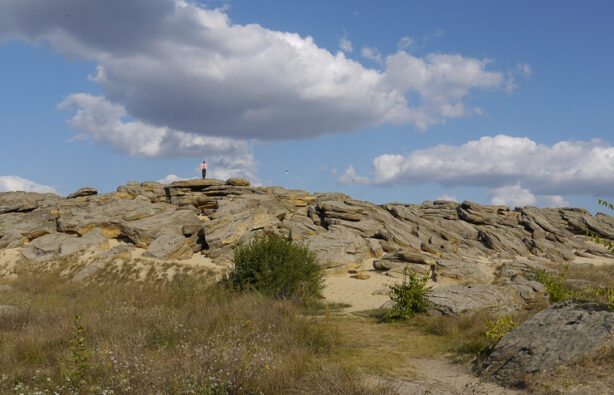 Фото: www.tavrijci.org