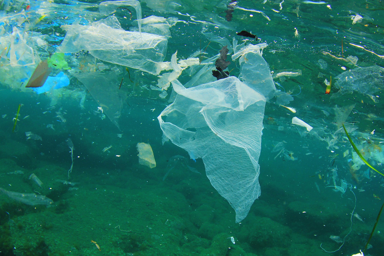отходы в море картинки идет