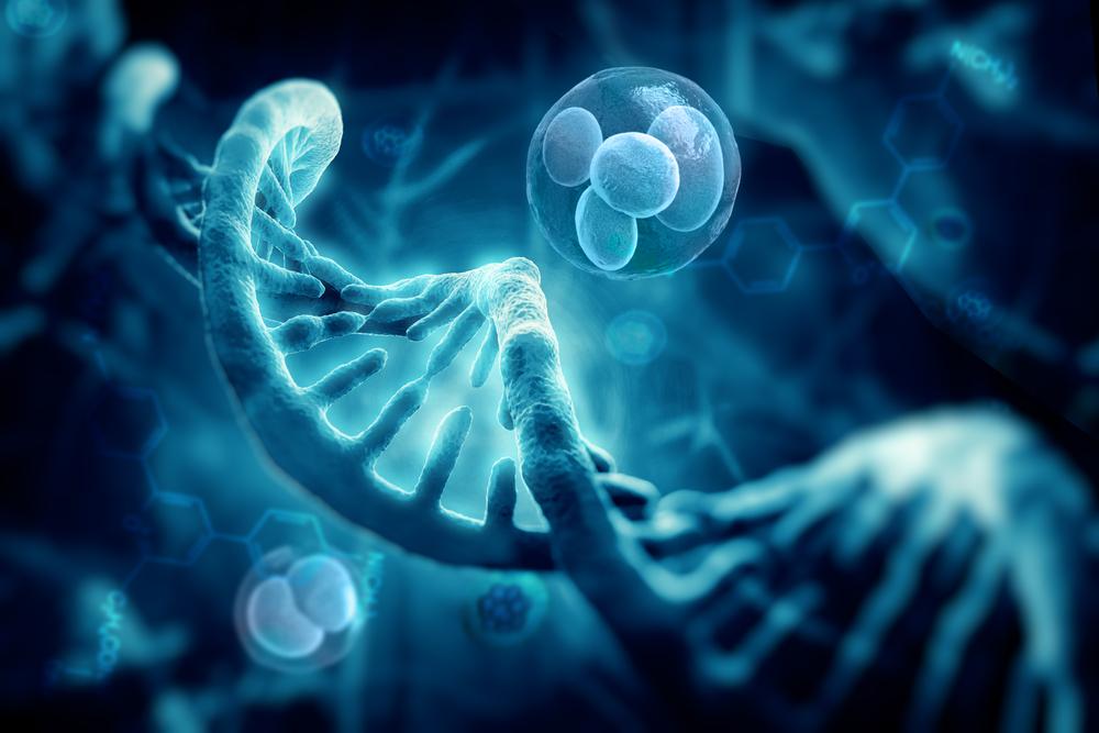 Ученые впервые «отредактировали» геном в человеческих эмбрионах