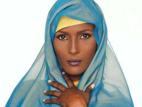 Варис Дирие: от бесправной сомалийской девочки до посла ООН.Вокруг Света. Украина