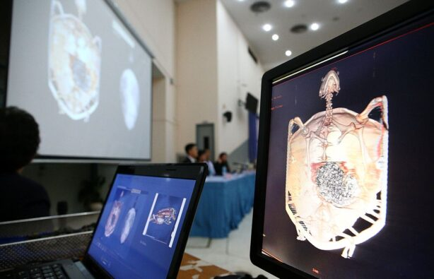 Фото: www.kp.ru