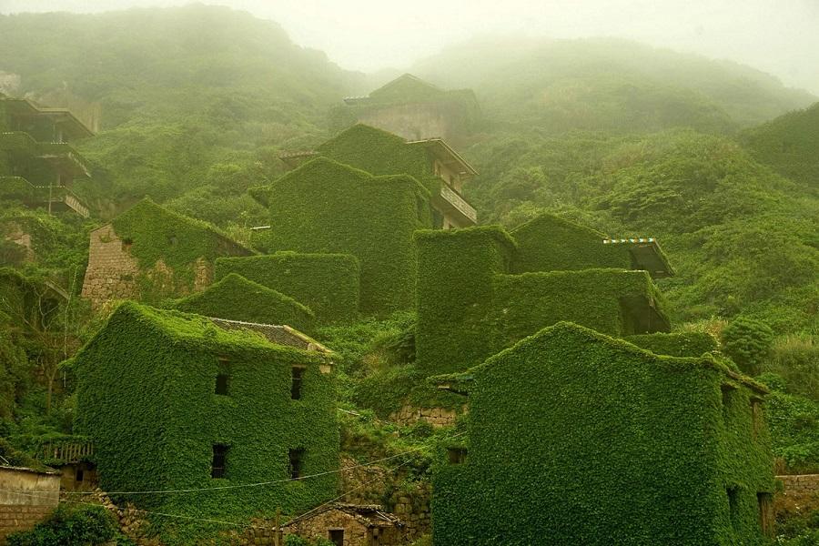 Рыбацкая деревушка в Китае, превратившаяся в «зеленое королевство».Вокруг Света. Украина