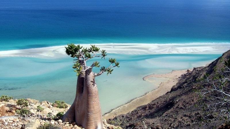Сокотра – красивейший затерянный остров счастья