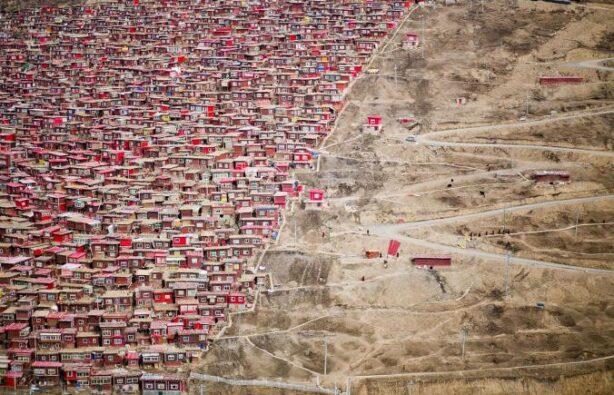 Фото:  XJUN LEE / NATIONAL GEOGRAPHIC